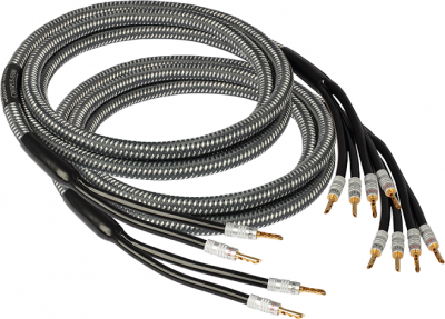 GOLDKABEL EDITION SERIES CHORUS BI-WIRE 3.0m